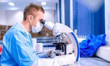 Современные методы исследования в анатомии