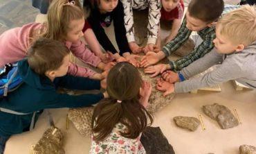 Палеонтологический музей: в мире древних гигантов