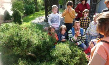 Прогулка с биологом в Мещерский, 7-11 лет