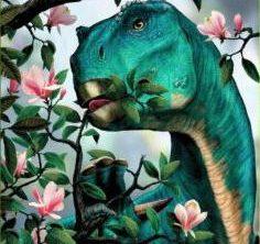 «Динозавры растительного мира» в Аптекарском огороде, 8-10 лет